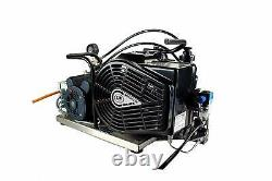 LW 100 E Auto Marine Breathing Air Compressor for SCUBA SCBA Paintball Tank Fill